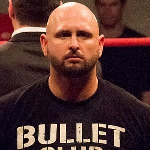 Karl Anderson net worth
