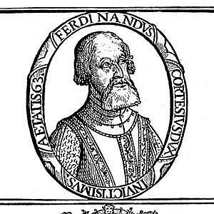 Hernando Cortes net worth