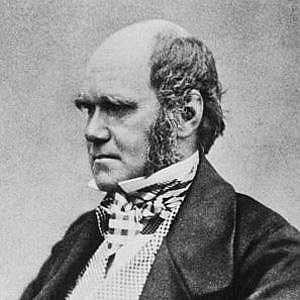 Charles Darwin net worth