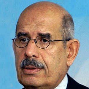 Mohamed ElBaradei net worth
