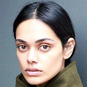 Zinnia Kumar net worth