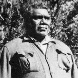 Albert Namatjira net worth