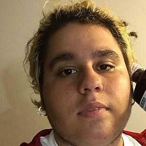 Fat Nick net worth